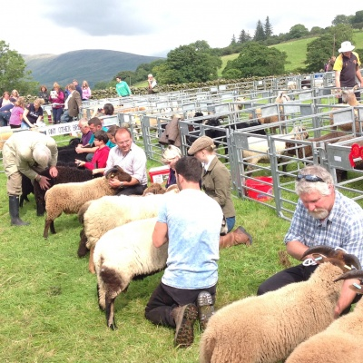 Kentmere Sheep Show